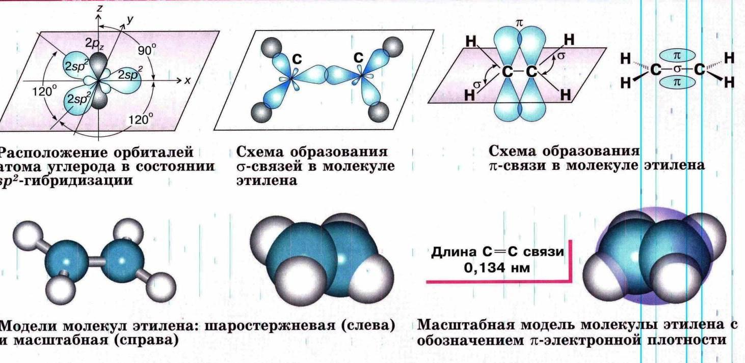 stroenie-molekuly-etilena