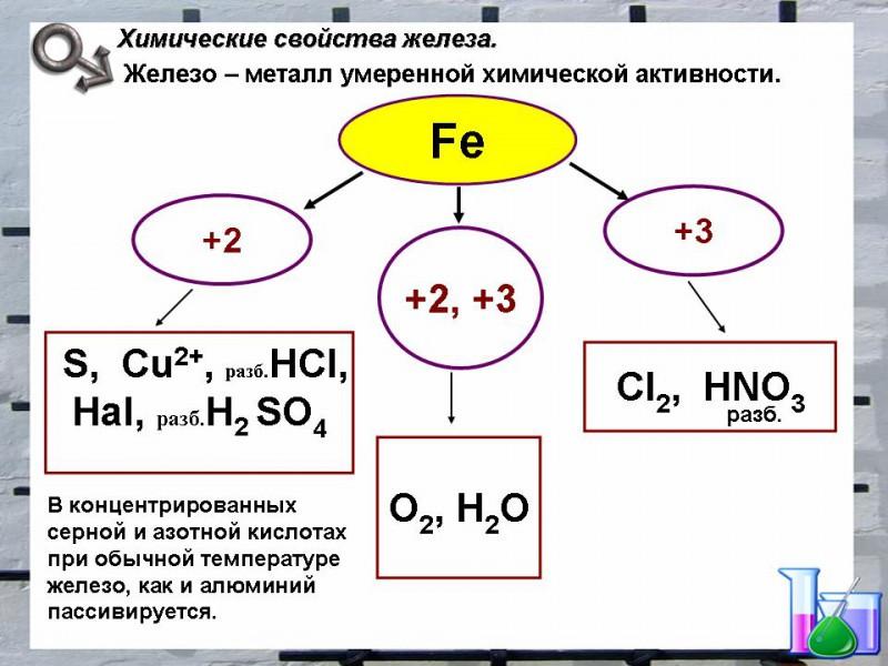 ximicheskie-svojstva-zheleza