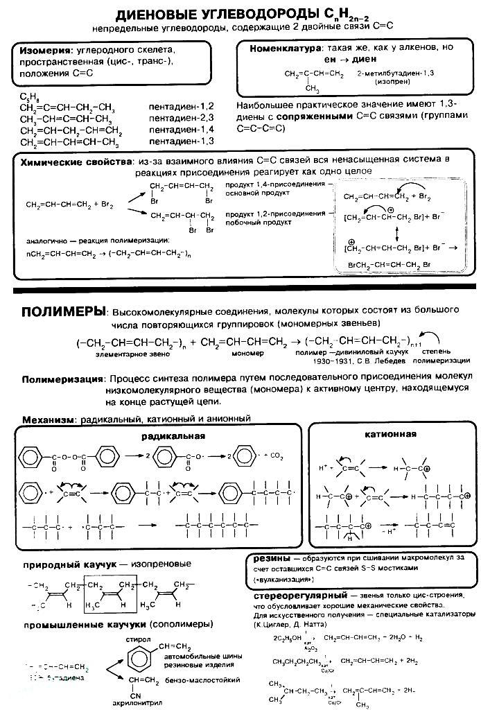dieny-nomenklatura-svojstva-694x1024
