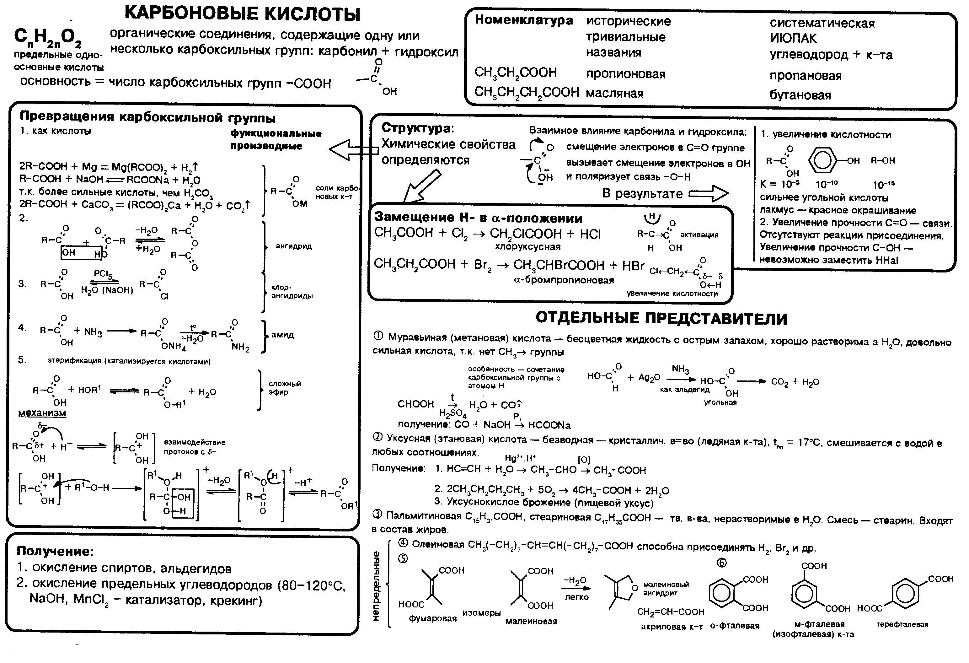karbonovye-kisloty-nomenklatura-poluchenie-svojstva